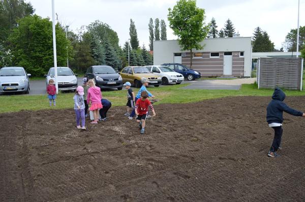 łąki-kwietne-edukacja